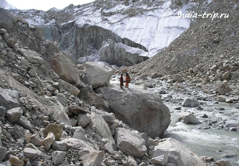 Камнеломка на подступах к леднику