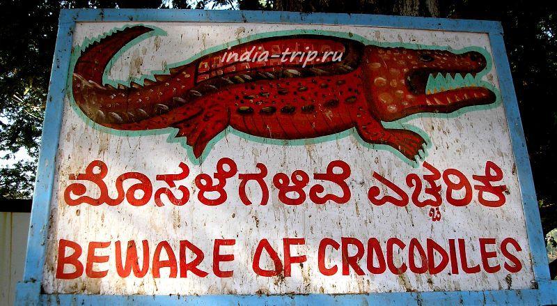"Хампи, плакат ""Бойтесь крокодилов"""