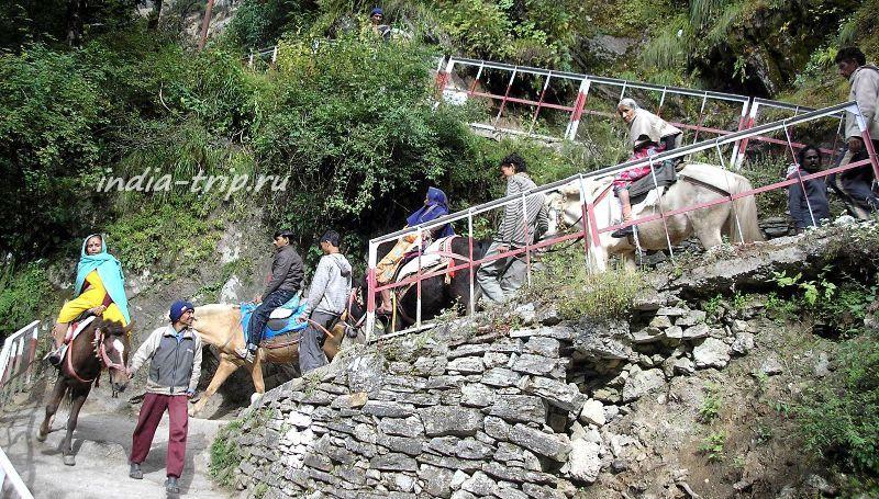 Паломники на лошадках