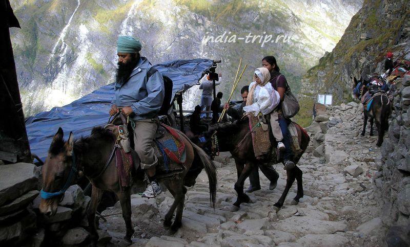 Семейство сикхов на лошадях
