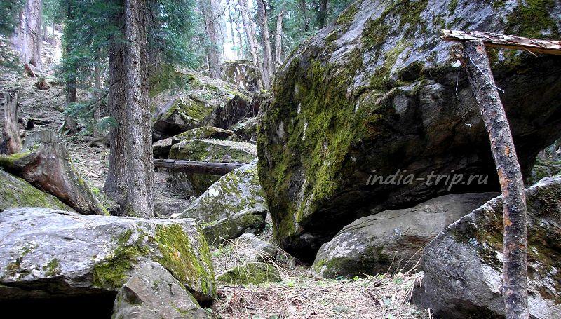 Огромный камень, поросший мхом