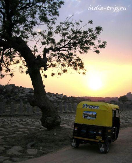 Рикша возле дерева