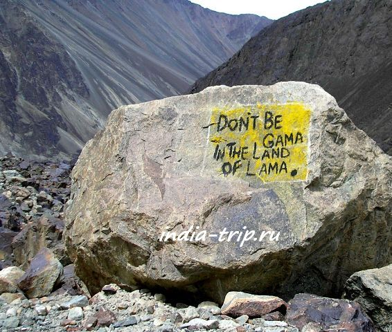 Don't be gama in the land of lama