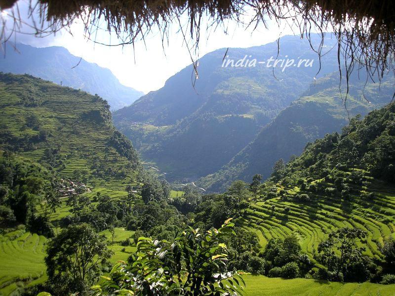 Террасное земледелие в Непале