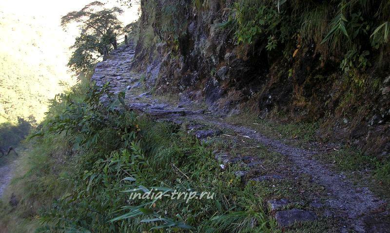 Непал, трек вокруг Аннапурны, тропинка