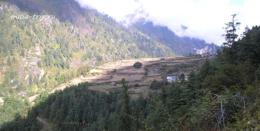 Непал, поля