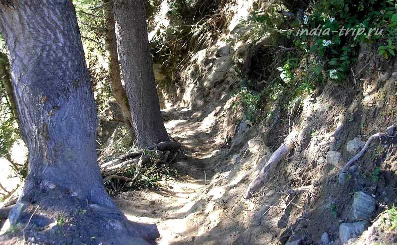 Тропа на склоне