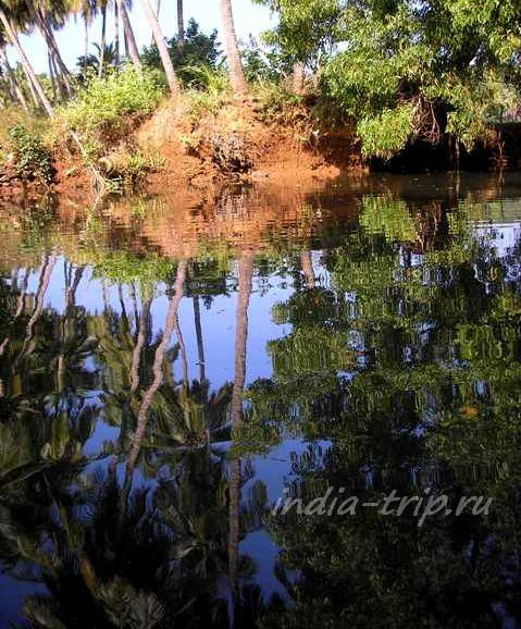 Отражение в воде