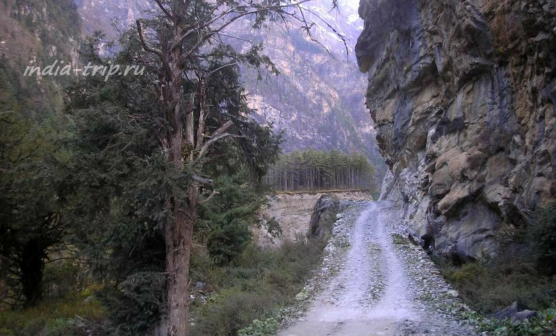 Тропа в Гималаях