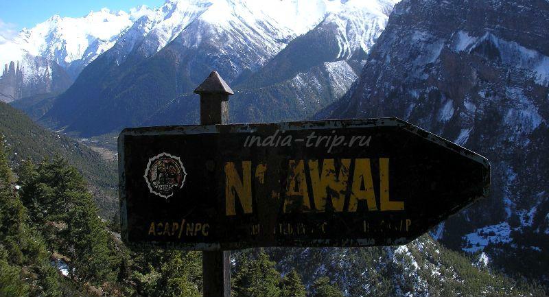 В Навал