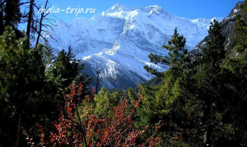Непал, лицо Аннапурны