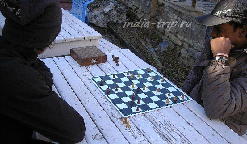 Шахматы на холоде