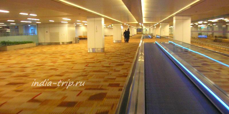 Желтый ковролин Делийского аэропорта