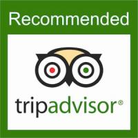 Логотип сайта TripAdvisor