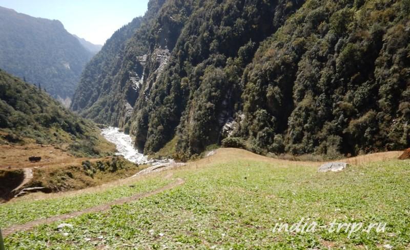 Река, горы, трава