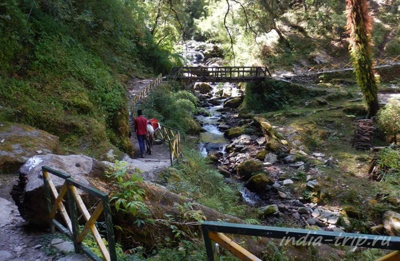 Ручей и мостик